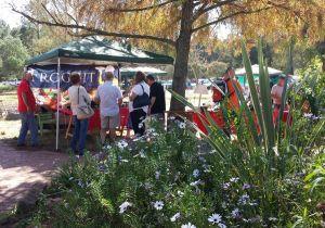 Camphill-market-stalls.jpg